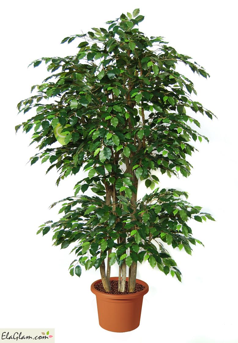 ficus-benjamin-boschetto-pianta-artificiale-h9308